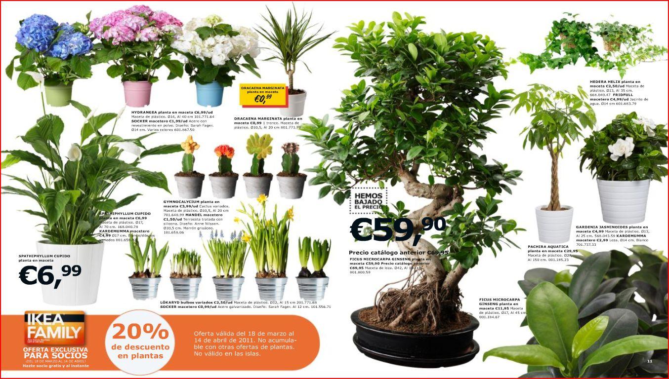 Plantas de IKEA - Decoraciu00f3n Sueca : Decoraciu00f3n nu00f3rdica y ...