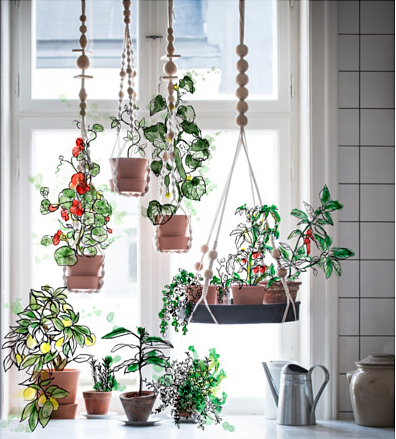 plantas-de-ikea-2017-cuerda