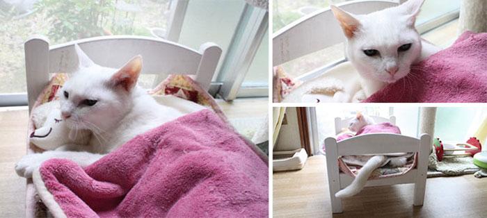 cama para gato blanco de ikea