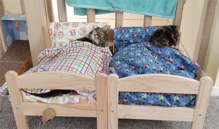 camas para gatos IKEA
