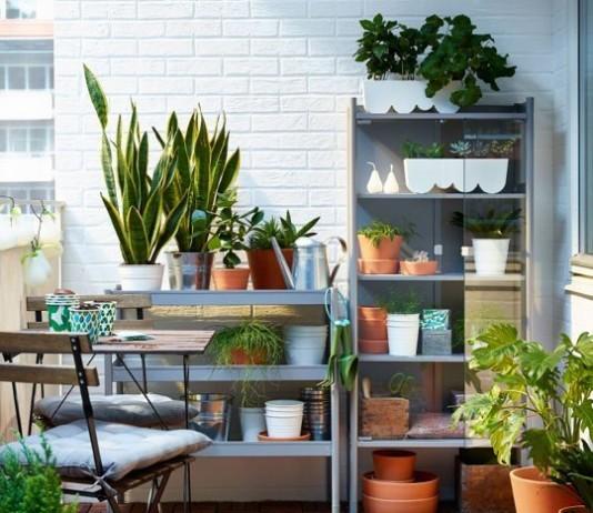 plantas de ikea