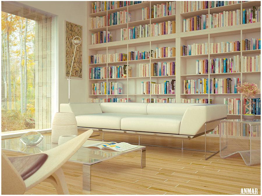 salón con biblioteca