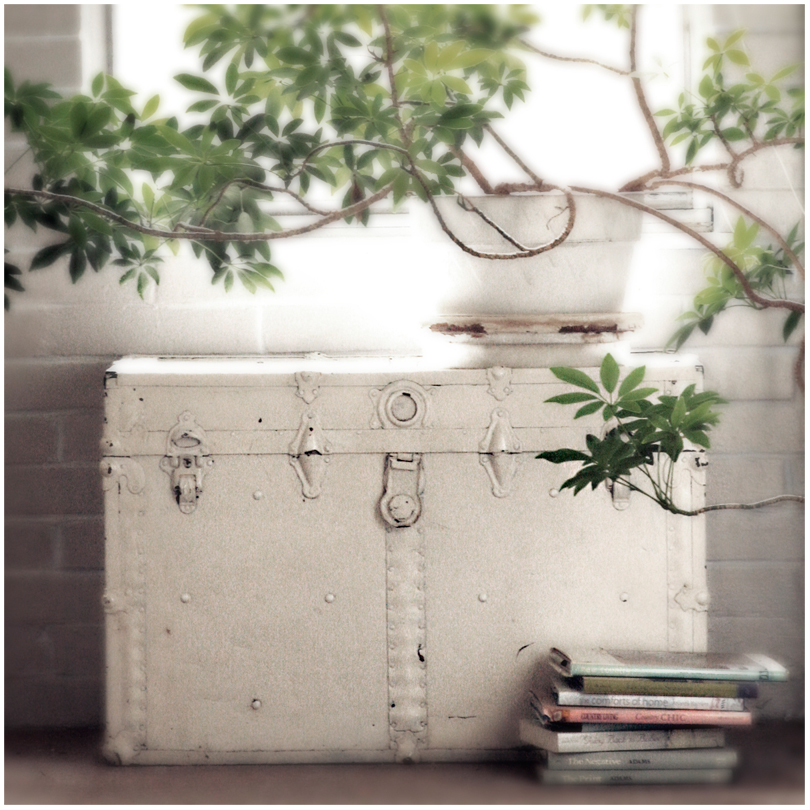 baúl pequeño y pintado de blanco