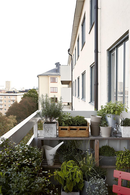 jardín en una terraza