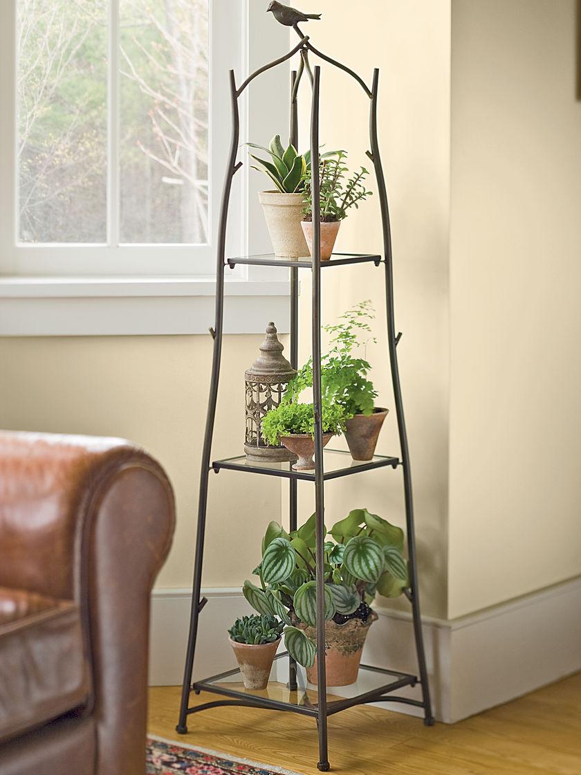 Diferentes áticos decorados con plantas