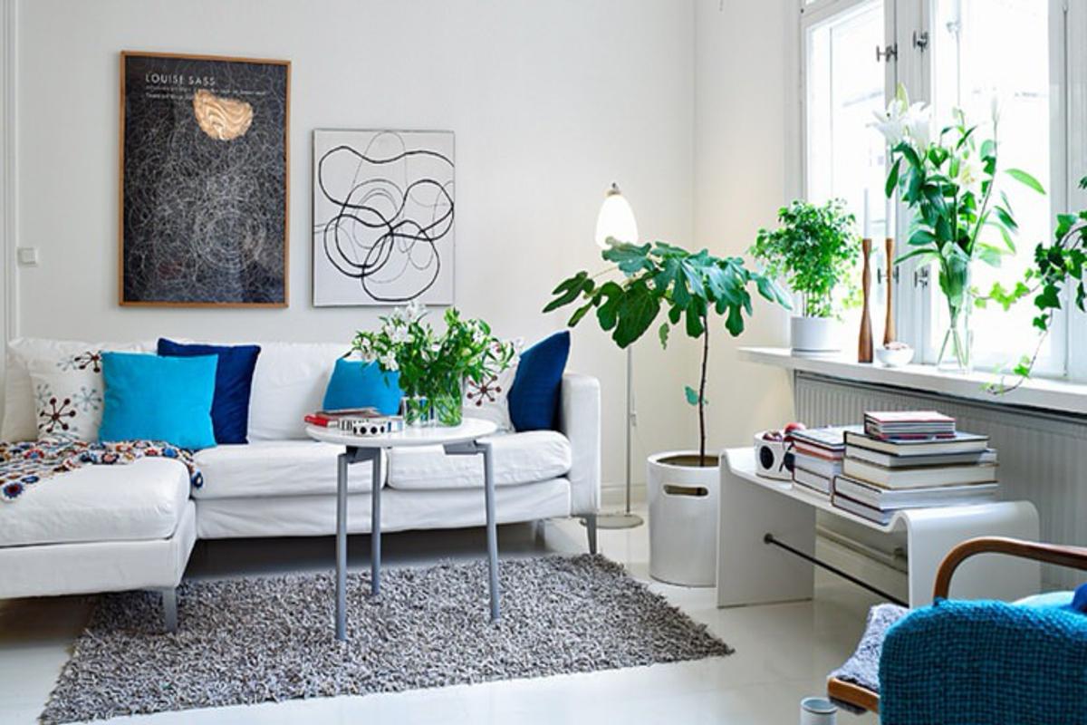 amueblar un piso completo - plantas