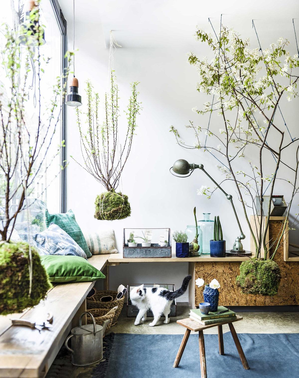 jardín vertical- arbolitos