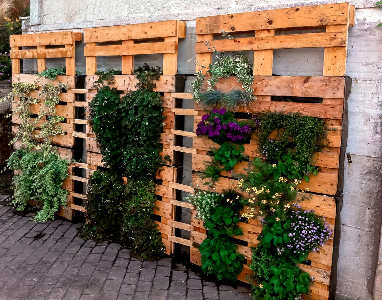 jardín vertical - pallets barnizados