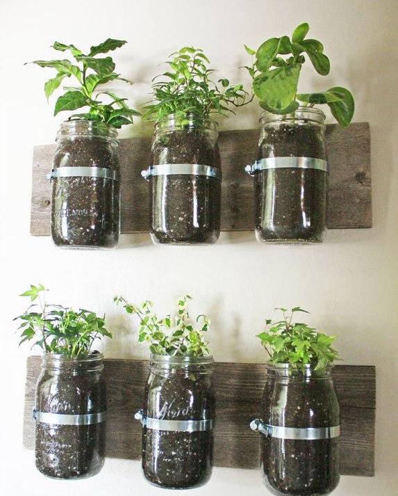 jardín vertical - tarros cocina
