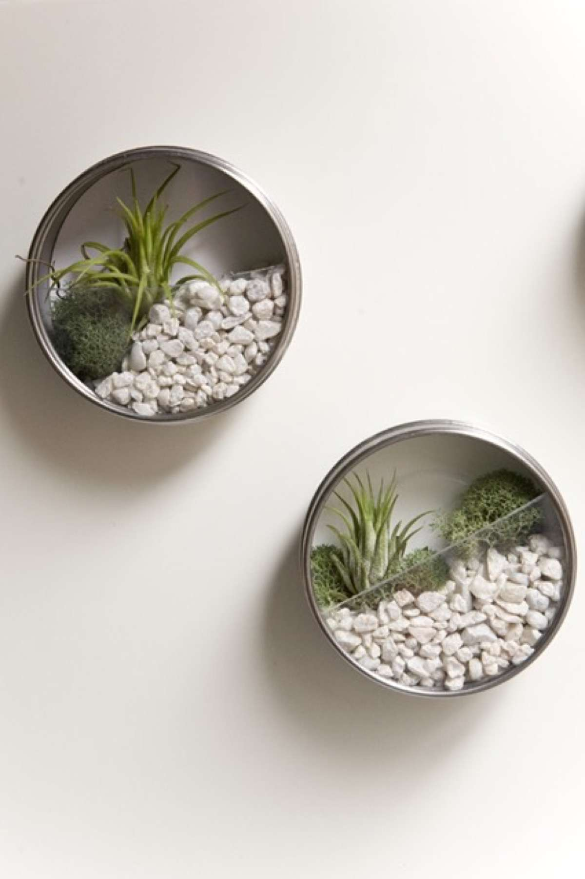 reciclar latas de conserva - estantes de pared