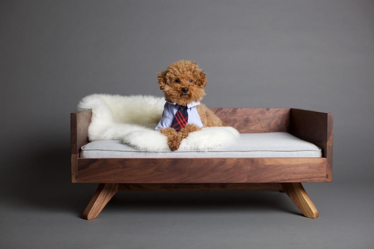 camas para perros - pupandkit