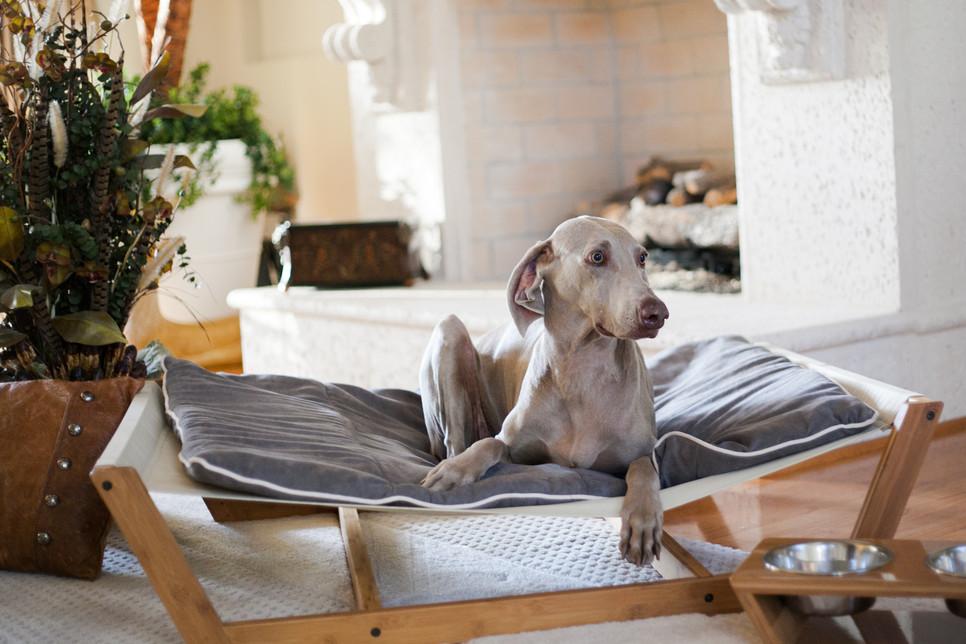 camas para perros - Hamaca de bambú
