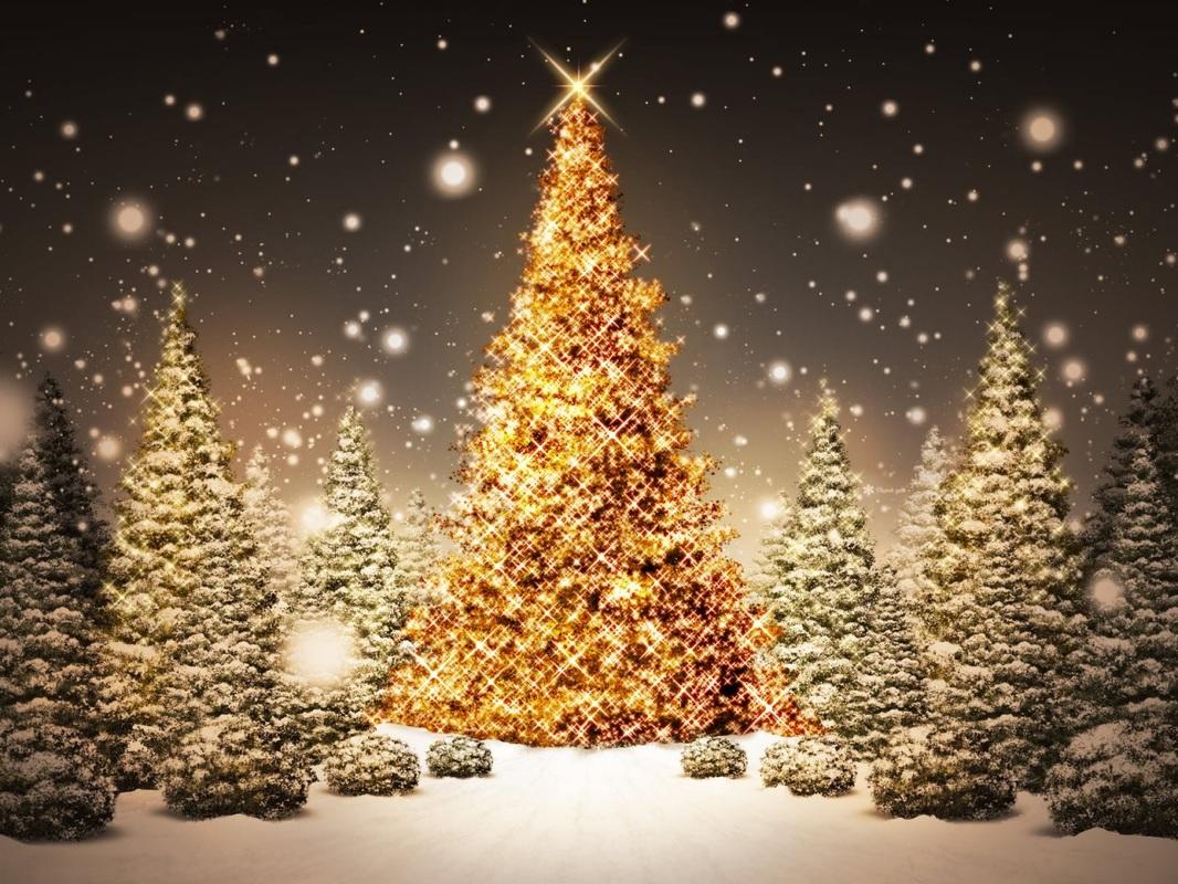 árbol de Navidad blanco - el origen