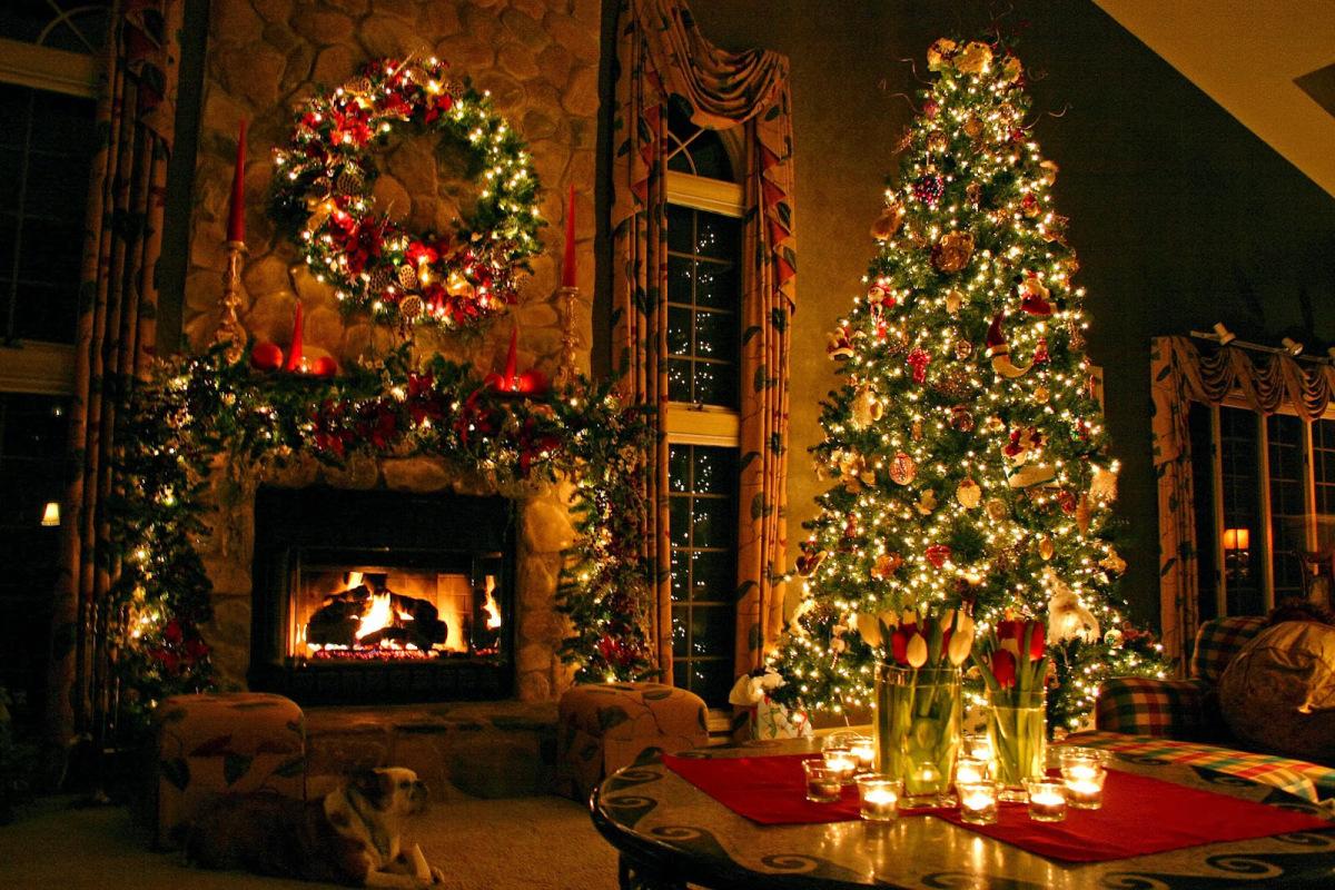 árbol de Navidad natural iluminado