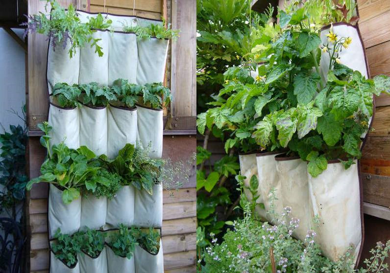 Decoración de terrazas - jardín vertical
