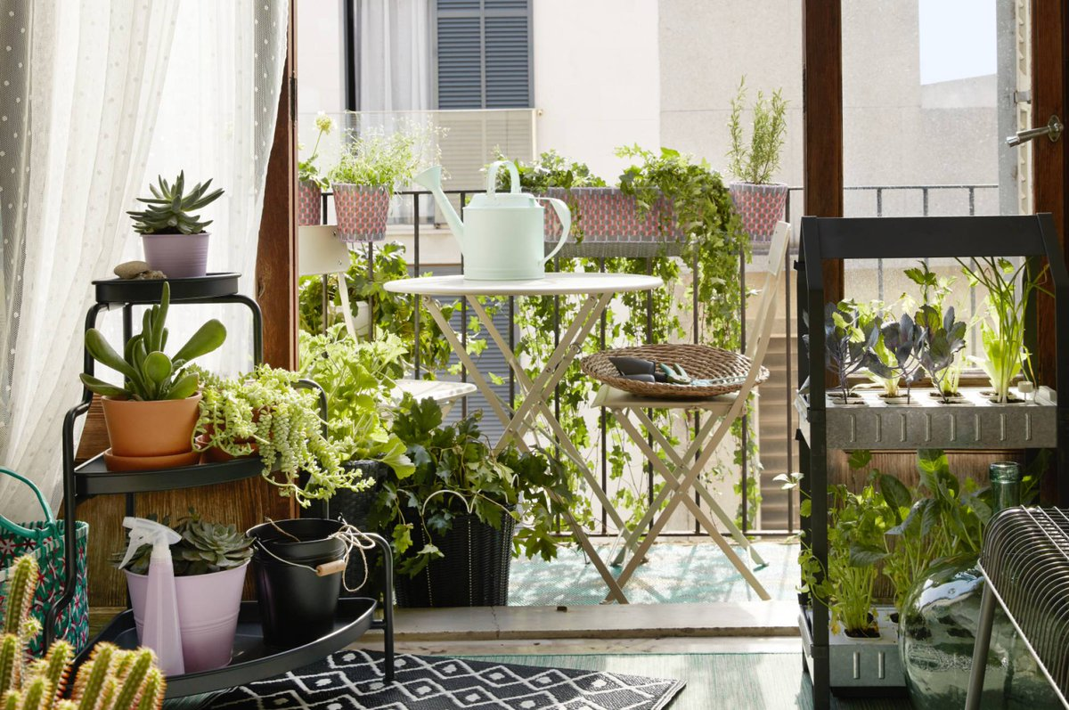 Muebles de terraza - plantas