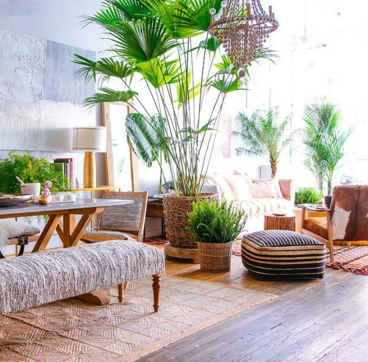 Estilo tropical - plantas