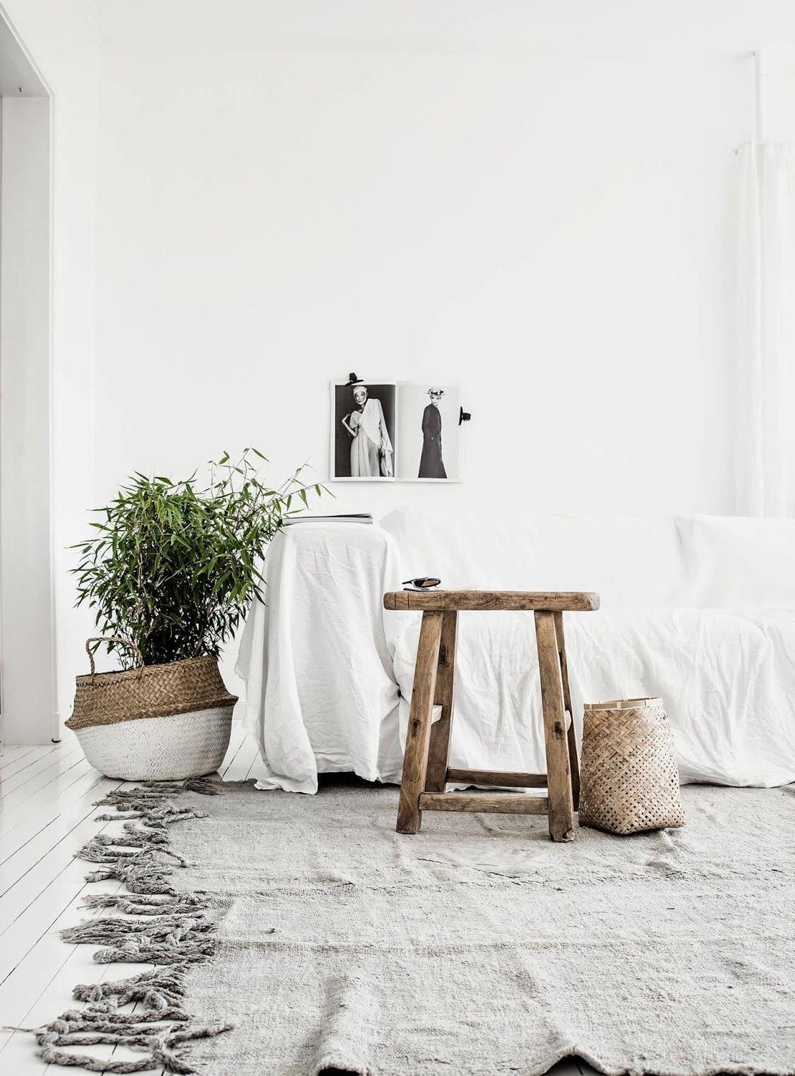 fibras naturales - cestos