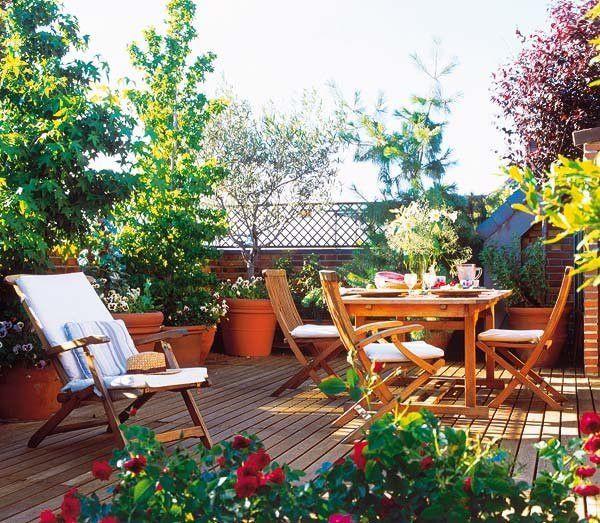 Plantas de exterior para terrazas y balcones