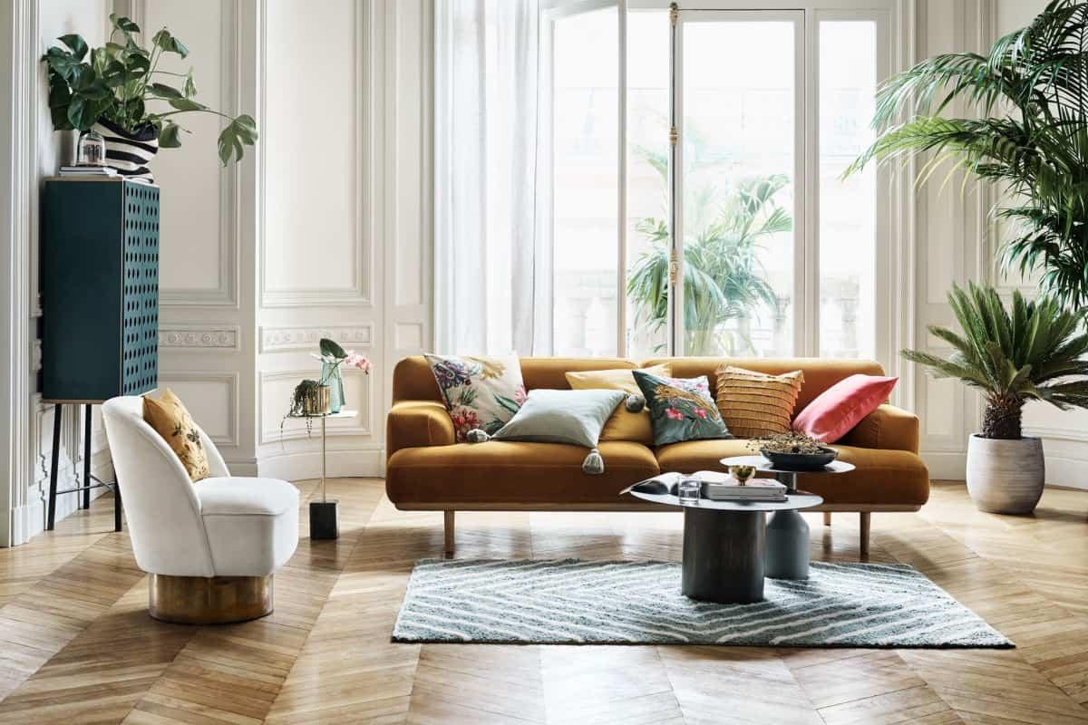 6 Plantas de interior ideales para decorar tu hogar durante todo el año
