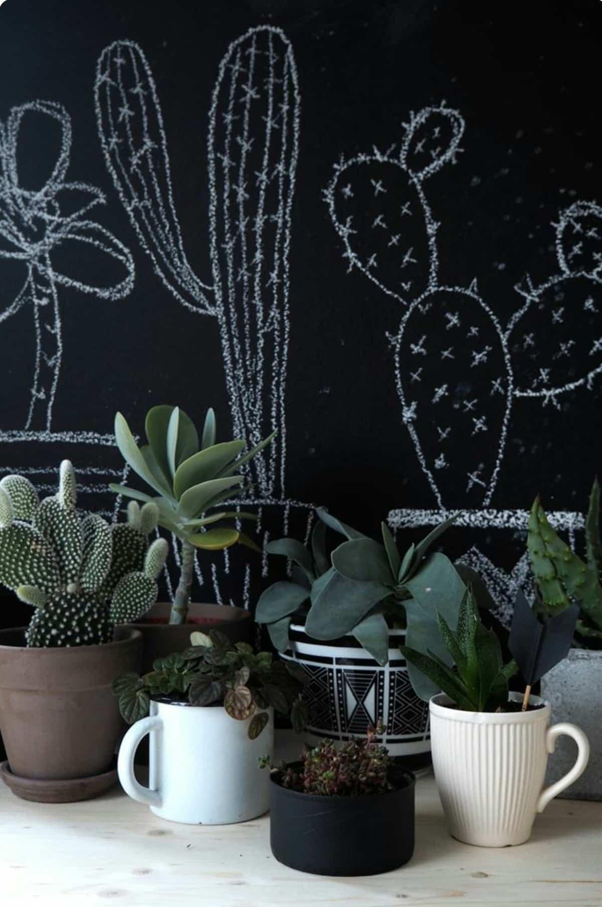 pintura de pizarra ideas y consejos para decorar la casa 3