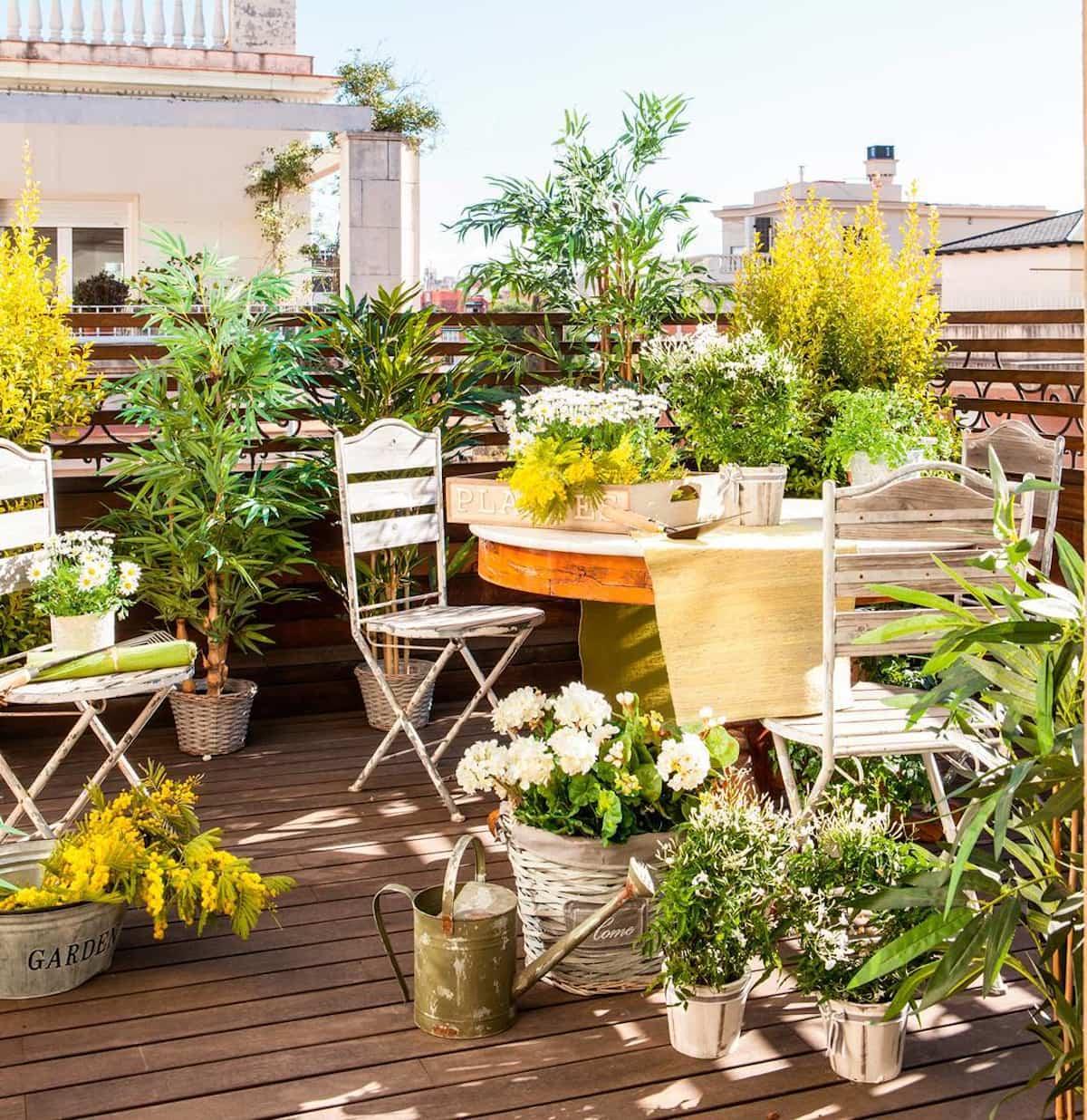como mantener tus plantas libres de enfermedades y plagas 7