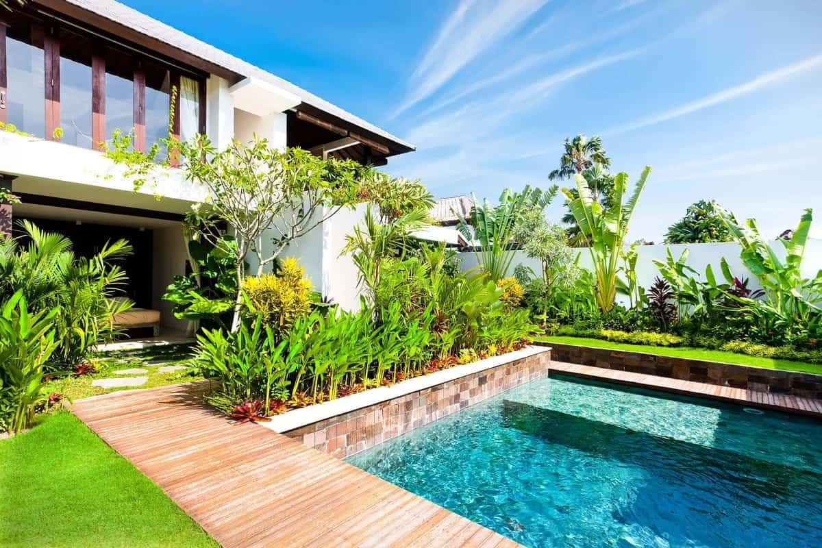 claves para elegir las plantas y arboles en la zona de la piscina 1