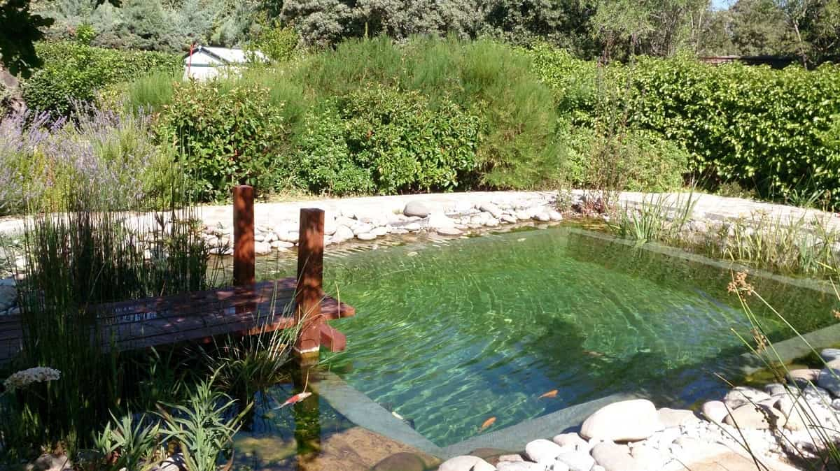 piscinas naturales 1