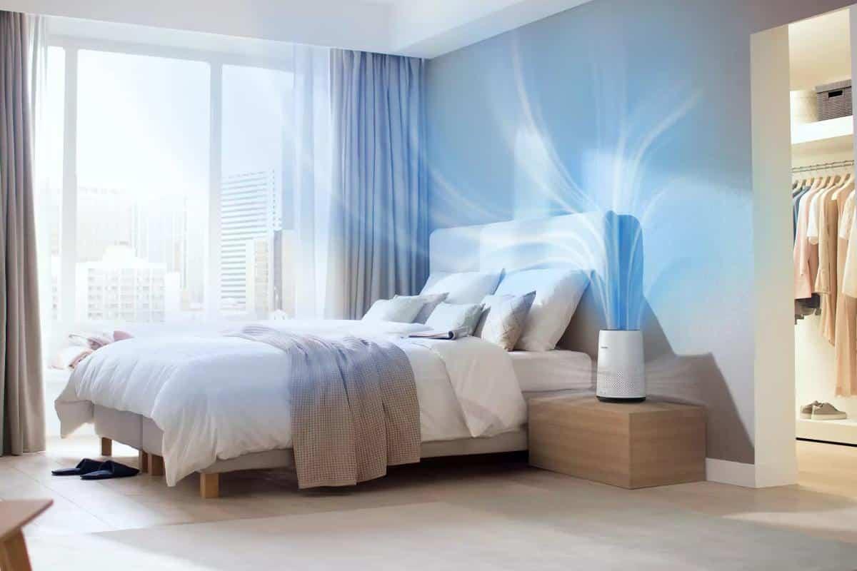 como purificar el aire en casa y mantenerlo limpio 6