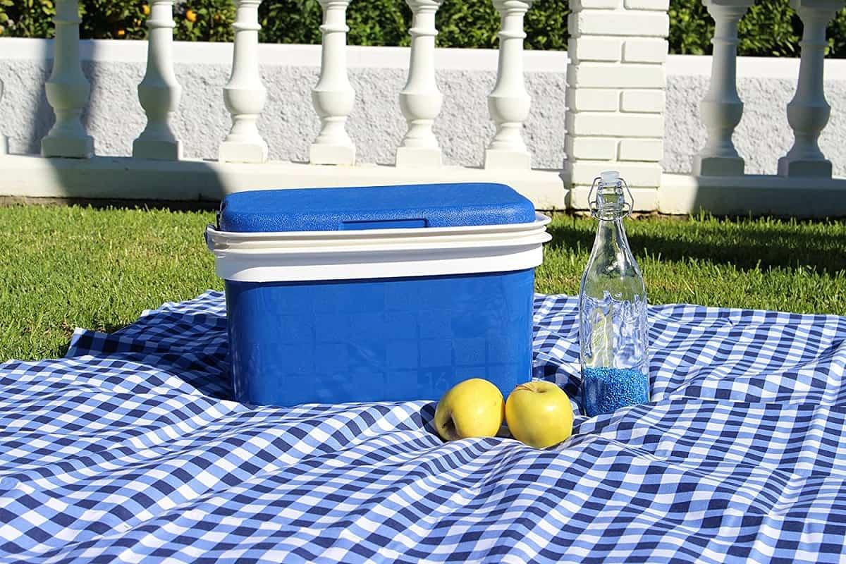 como conseguir un picnic perfecto 10