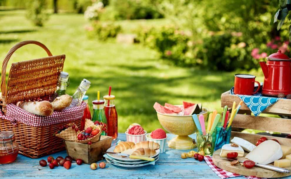 como conseguir un picnic perfecto 5