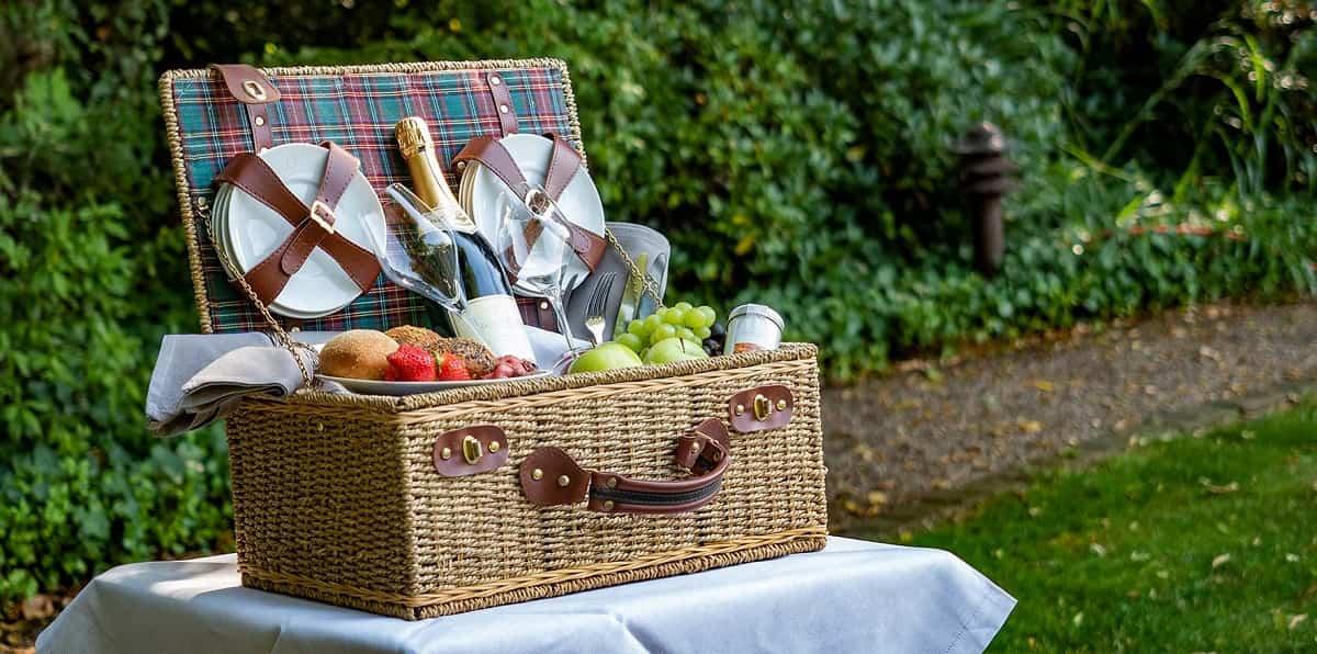 como conseguir un picnic perfecto 8
