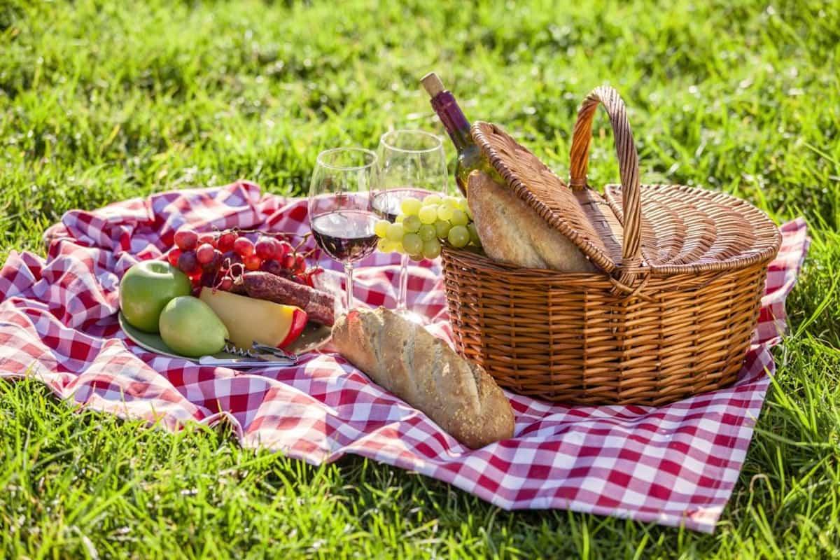 como conseguir un picnic perfecto 9