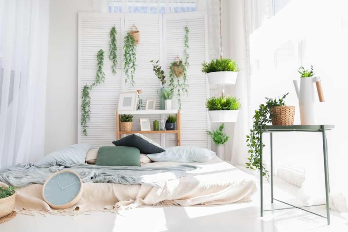 8 plantas perfectas para el  dormitorio