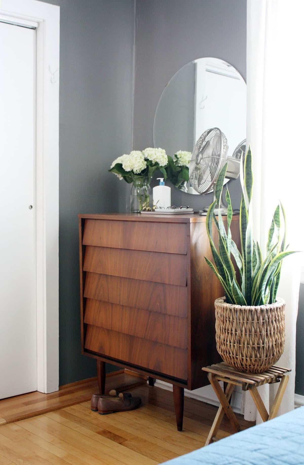 8 plantas perfectas para el dormitorio 6